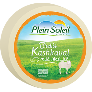 Sheep Kashkaval Cheese